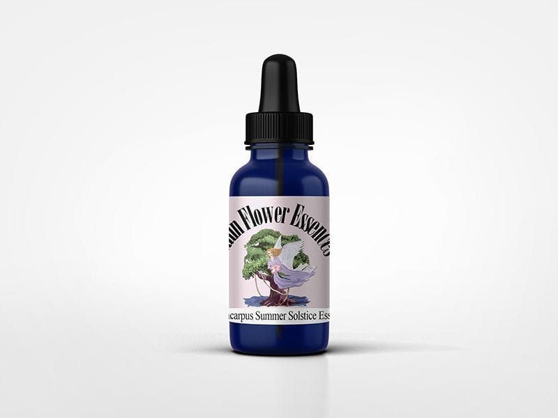 Portacarpus Summer Solstice Flower Essence